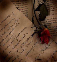 Letters from the Battlefield - Love in War
