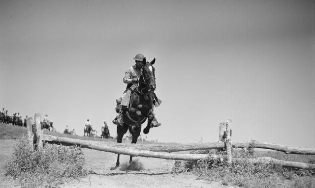 Trooper & Mount