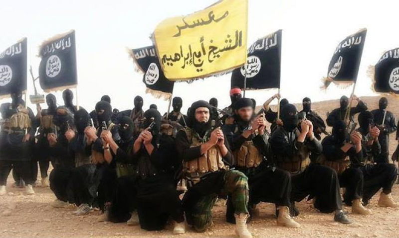 Helm: 'End game' needed for military action against ISIL