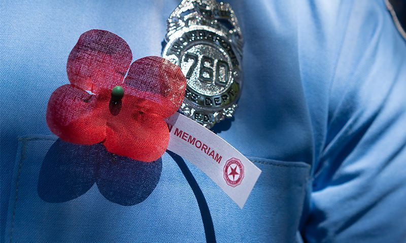 Poppy Day platform offers ideas, videos and products of honor