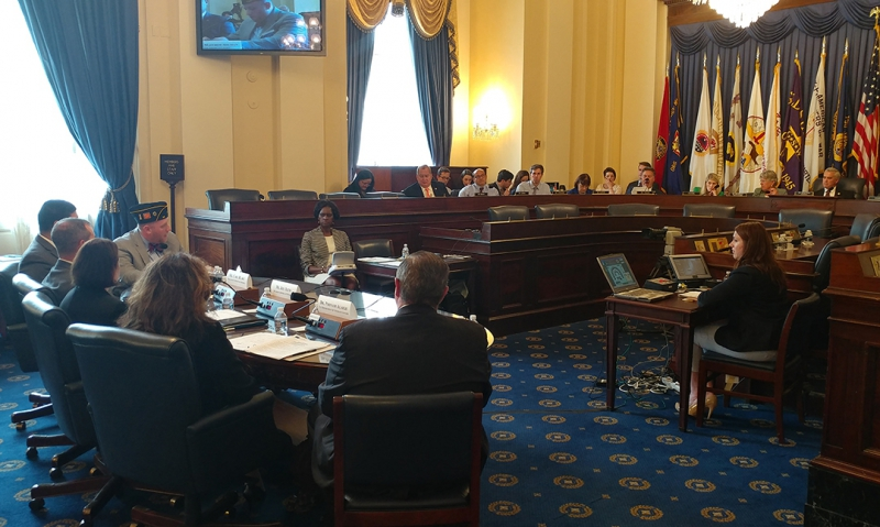 Legion testifies on VA's 2018 budget