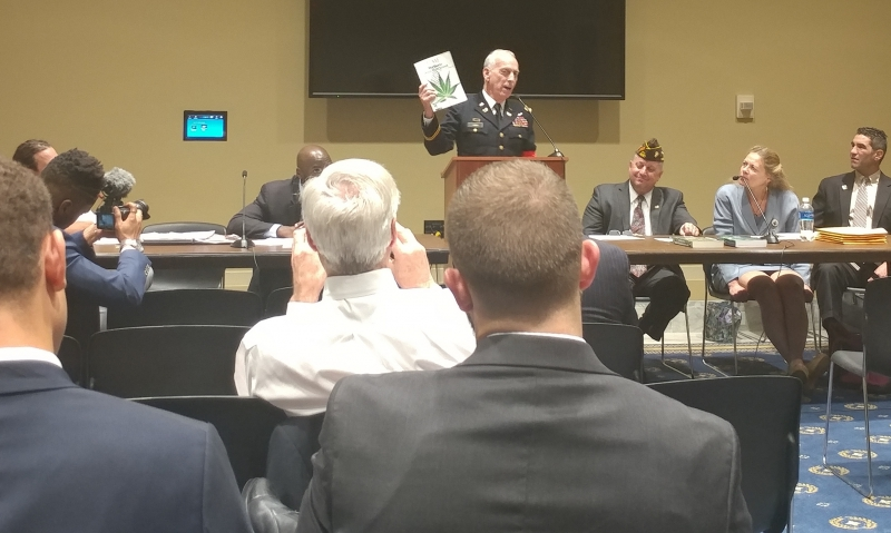 Medical professionals, veteran advocates convene for medical cannabis forum