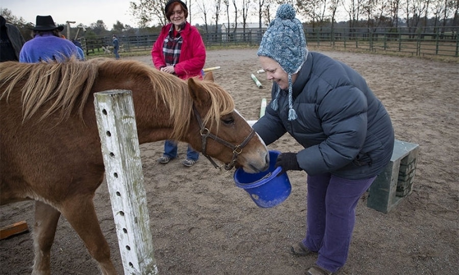 Equine therapy helps veterans readjust to civilian life